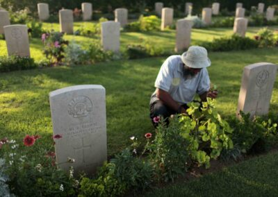 A guard trims flowers planted next to the grave of 299 Corporal Thomas Browne in Deir El Belah War Cemetery, in the central Gaza Strip June 16, 2014. Photo by Ashraf Amra