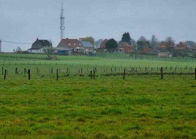 The village of Messines viewed from Ploegsteert Wood.