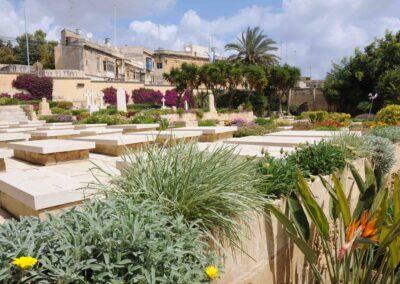 Pieta War Cemetery, Malta , where 795 Trooper William Sharpe is buried.
